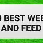 10 Best Weed and Feed 2021 Reviews | Lawnscanner