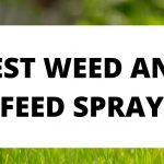 5 Best Weed and Feed Spray 2021 Reviews | Liquid Weed and Feed