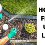 5 EASY STEPS TO FIX AN UGLY LAWN