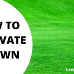 8 Easy Steps to Successful Lawn Renovation   Lawnscanner
