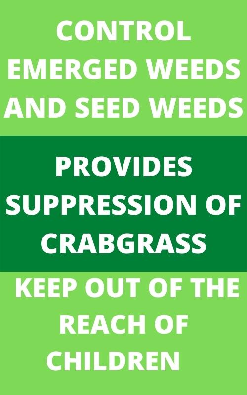 BEST WEED AND FEED FOR ST. AUGUSTINE GRASS