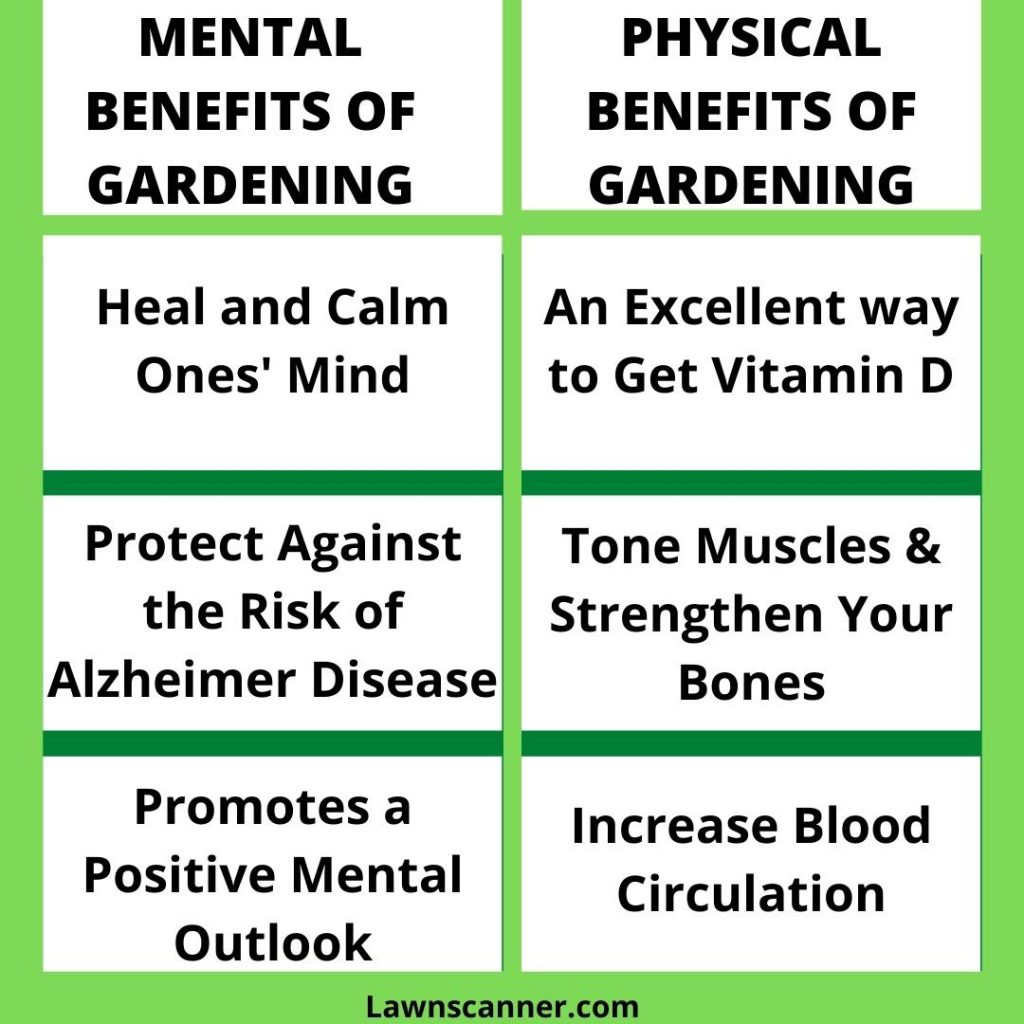 physical and mental health benefits of gardeing