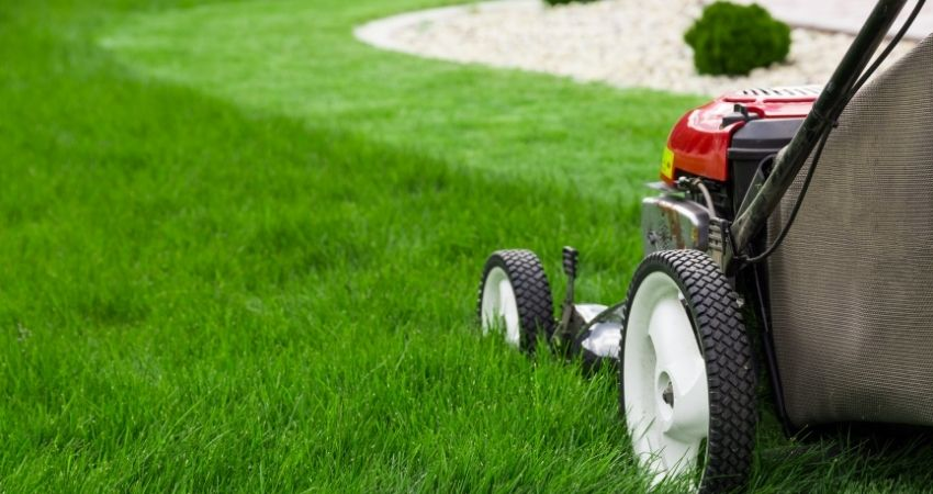 Mow the Area